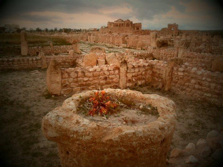 Archaeological site of Sbeitla.